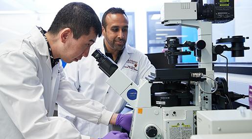Research Centres & Institutes