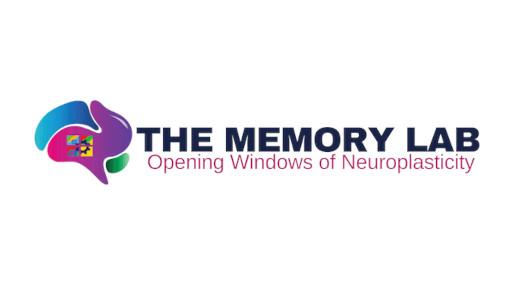 macstroke-memory-lab