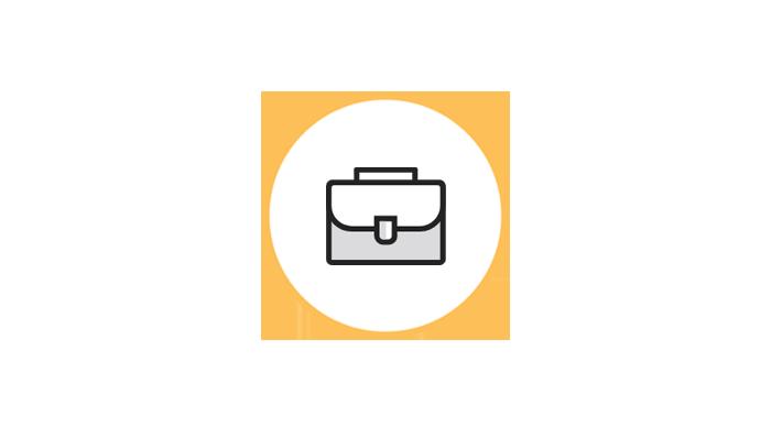 Briefcase2