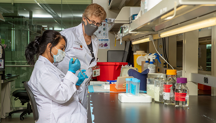 Alison Fox-Robichaud, right, in her lab with Dhruva Dwivedi at the Thrombosis and Atherosclerosis Research Institute.