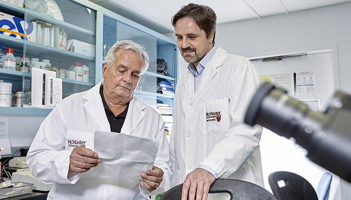 Premysl Bercik and Stephen Collins in a McMaster lab