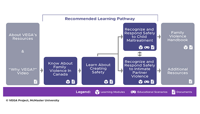 The VEGA Learning Pathway.