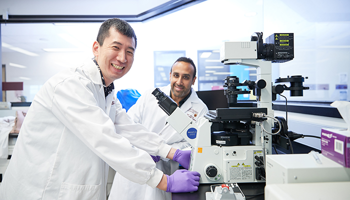 Mick Bhatia, right, director of McMaster University's Stem Cell and Cancer Research Institute and Mio Nakanishi, postdoctoral fellow in the Bhatia lab.