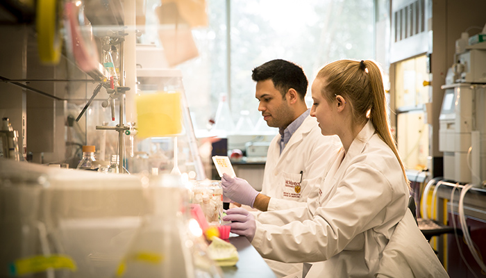 Researchers in the Institute for Infectious Disease Research