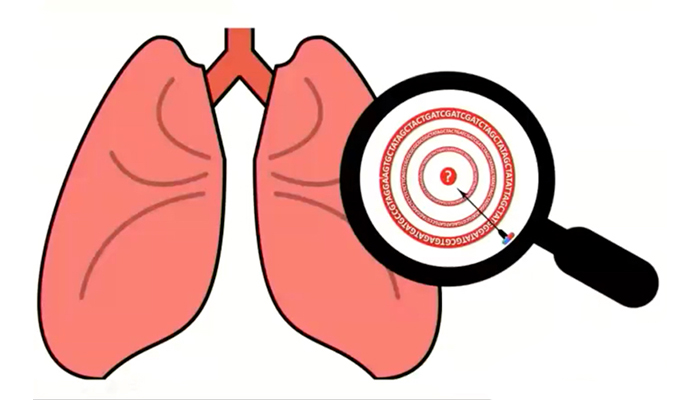 Target identification in lung disease