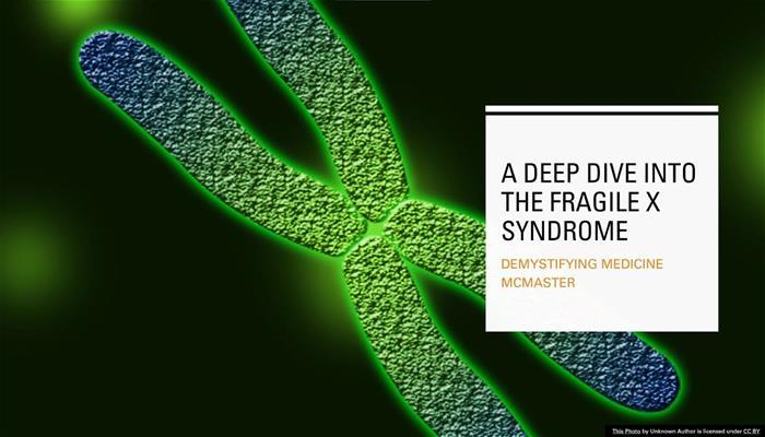 A Deep Dive Into The Fragile X Syndrome