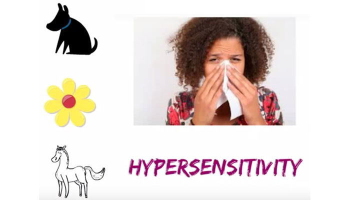 Hypersensitivity to allergens