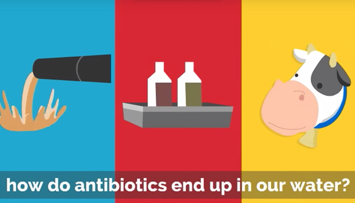 How do antibiotics end up in our water?