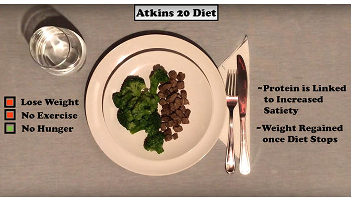 Atkins 20 diet