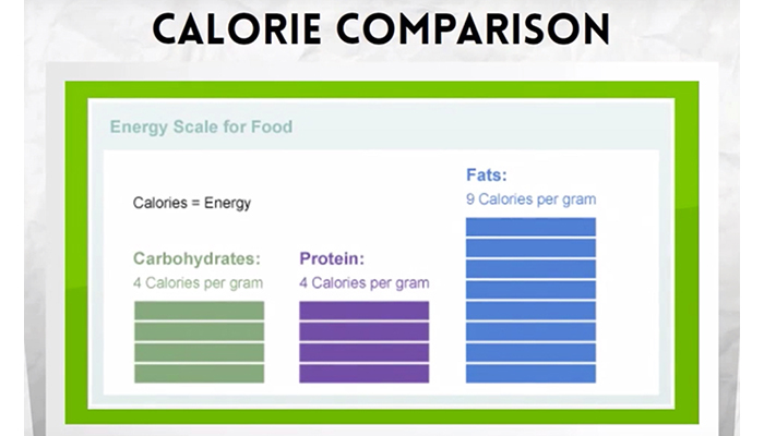 Calorie comparison for foods