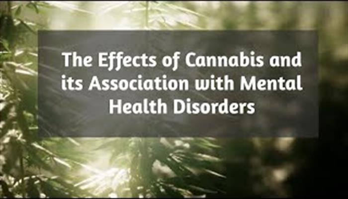 Cannabis and its effect on mental health