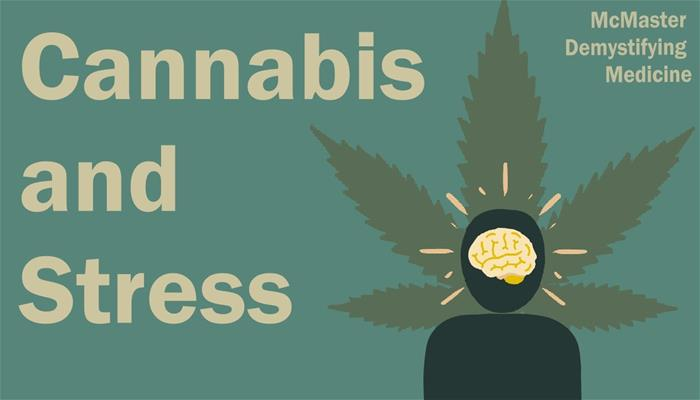 Cannabis and Stress