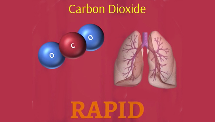 CO2 and human body