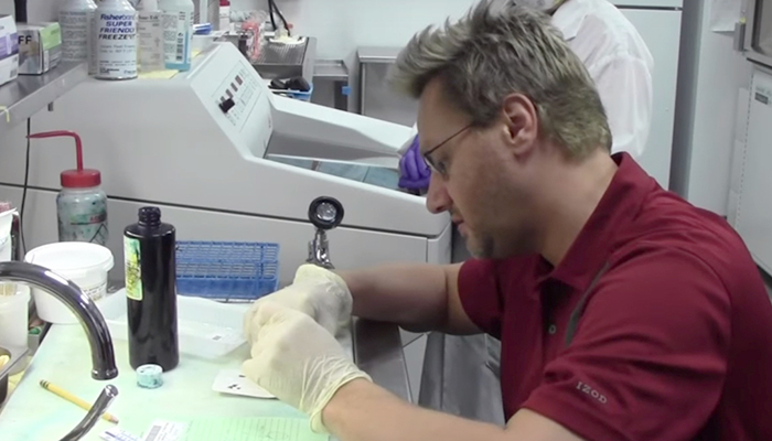 CJ Cutz working with lung tissue samples