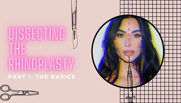 Dissecting Cosmetic Surgery Rhinoplasty Part I