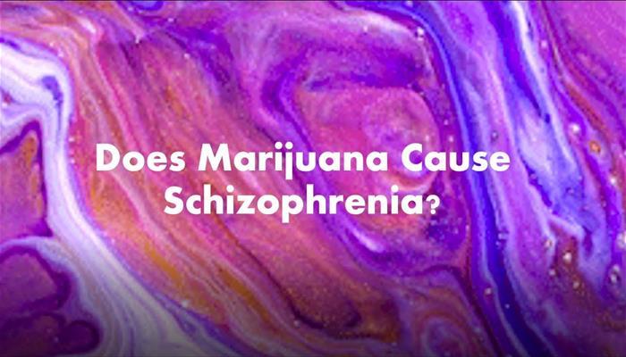Does Marijuana Cause Schizophrenia