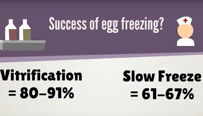 Egg freezing success rate