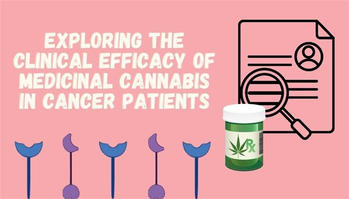 Exploring the Clinical Efficacy of Medicinal Cannabis in Cancer Patients