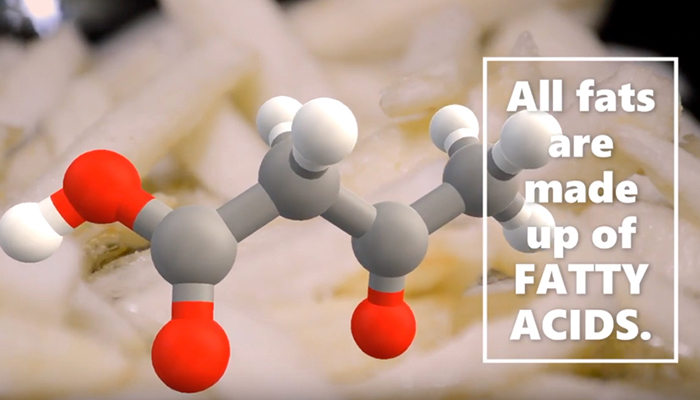 All fats are made up of fatty acids