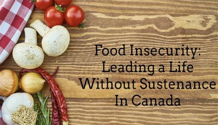 Food insecurity Leading a life Without Sustenance in Canada