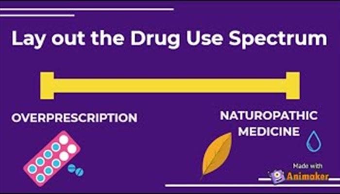 Laying out the Drug Use Spectrum