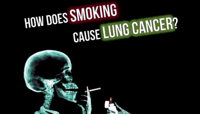 How does smoking cause lung cancer?
