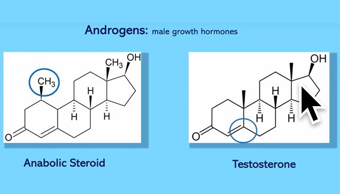Male growth hormones