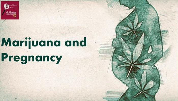 Marijuana use during pregnancy - Is it safe
