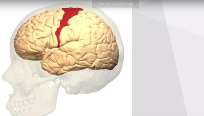 Minor concussion
