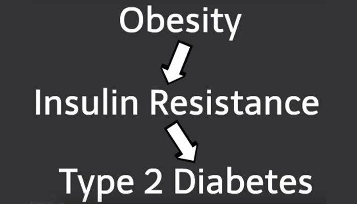 Link between obesity and type 2 diabetes