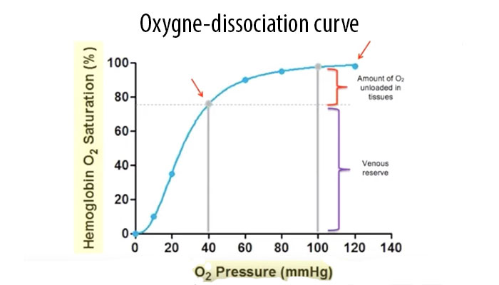 Oxygen-dissociation curve