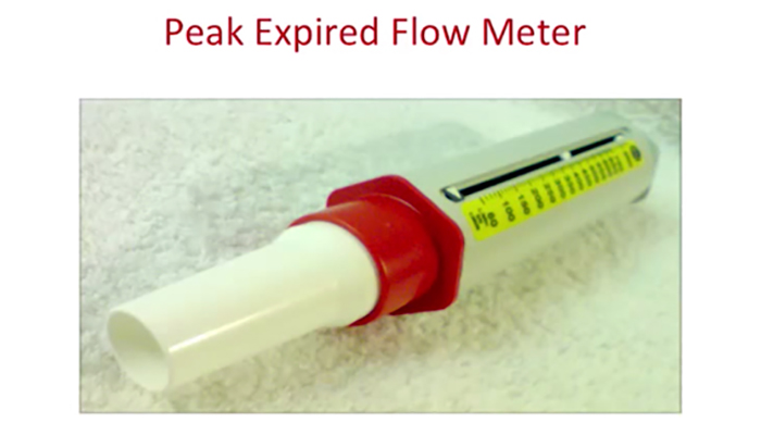 Peak expired flow meter