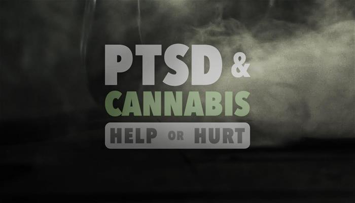 PTSD & Cannabis Help or Hurt