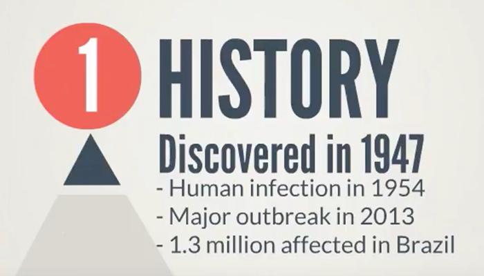 Zika virus history
