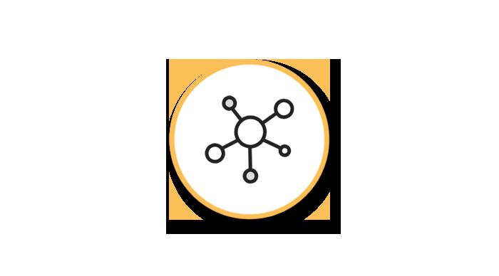 network (1)