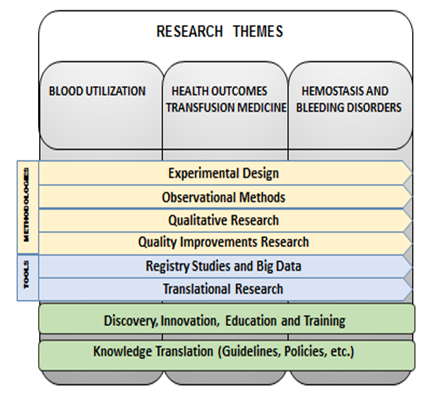 This chart outlines the research themes listed above and below in a graphic format.